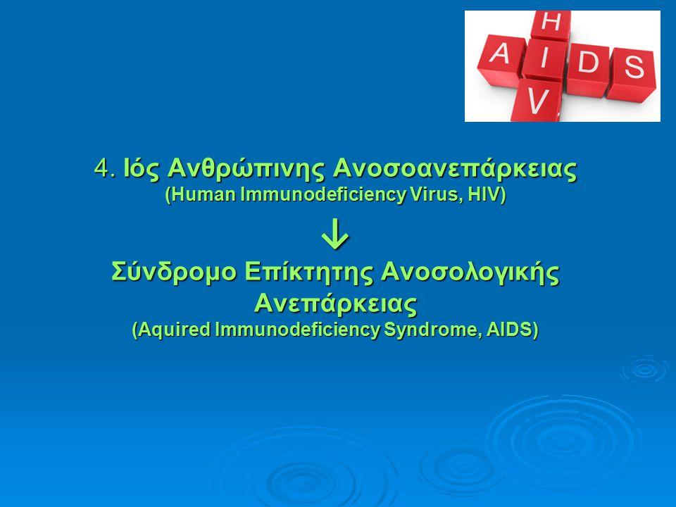4. Ιός Ανθρώπινης Ανοσοανεπάρκειας (Human Immunodeficiency Virus, HIV) ↓ Σύνδρομο Επίκτητης Ανοσολογικής Ανεπάρκειας (Aquired Immunodeficiency Syndrom