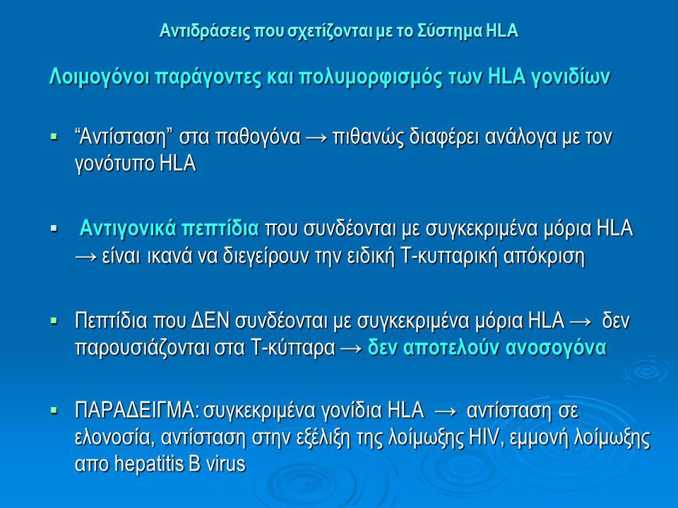 Αντιδράσεις που σχετίζονται με το Σύστημα HLA  Η ποικιλομορφία των παθογόνων → κύρια πίεση επιλογής που ευνοεί τον πολυμορφισμό των HLA  Πολυμορφισμός HLA → αύξηση πιθανότητας αναγνώρισης ↑↑παθογόνων από τα μόρια HLA → ανάπτυξης προστατευτικής ανοσίας