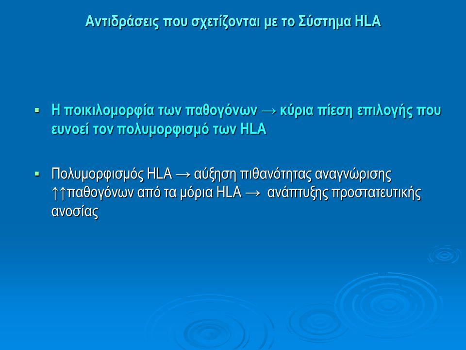 Αντιδράσεις που σχετίζονται με το Σύστημα HLA Τυποποίηση ΗLA: Εφαρμογές στη Διαγνωστική Ιατρική  Συσχέτιση συνύπαρξης συγκεκριμένων γονιδίων HLA με αυτοάνοσα ή άλλου τύπου νοσήματα → διαπίστωση γενετικής προδιάθεσης του ατόμου («ευπάθεια» εκδήλωσης της νόσου)  Ουσιώδης ρόλος στη μεταμόσχευση ιστών και οργάνων → έλεγχος ιστοσυμβατότητας δότη και λήπτη → αποφυγή απόρριψης μοσχεύματος