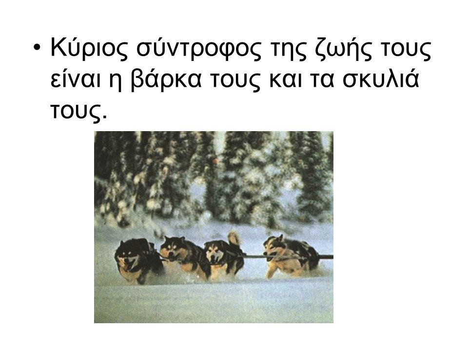 Κύριος σύντροφος της ζωής τους είναι η βάρκα τους και τα σκυλιά τους.