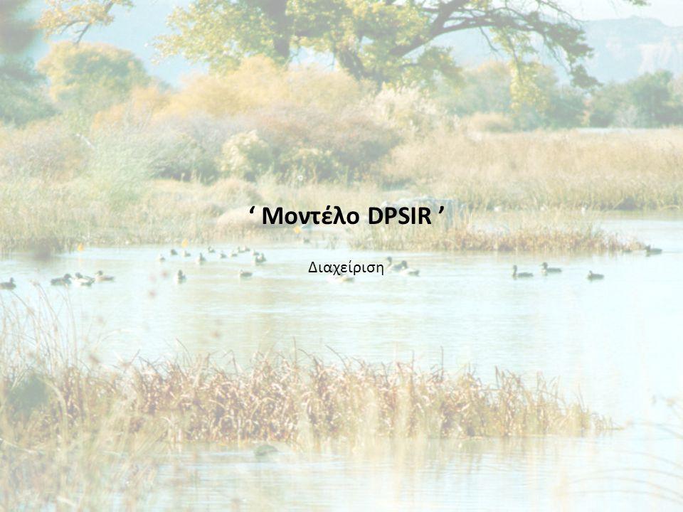' Μοντέλο DPSIR ' Διαχείριση