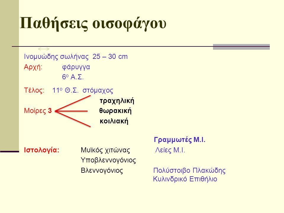 Αρτηρίες - Φλέβες - Λεμφαγγεία: Ο οισοφάγος έχει πλούσια αιμάτωση αλλά δεν έχει καθαρά δική του αιμάτωση: Αιματώνεται εκ των άνω προς τα κάτω από : 1.