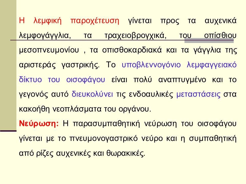 Αγγείωση:Πλούσια αιμάτωση Ακροτελεύτητοι γειτονικοί Αρτηριακοί κλάδοι* Λεμφαγγεία:Πλούσιο λεμφικό δίκτυο* Νεύρωση:Κλάδοι Πνευμονογαστρικού Αυτόνομο Ν.Σ.