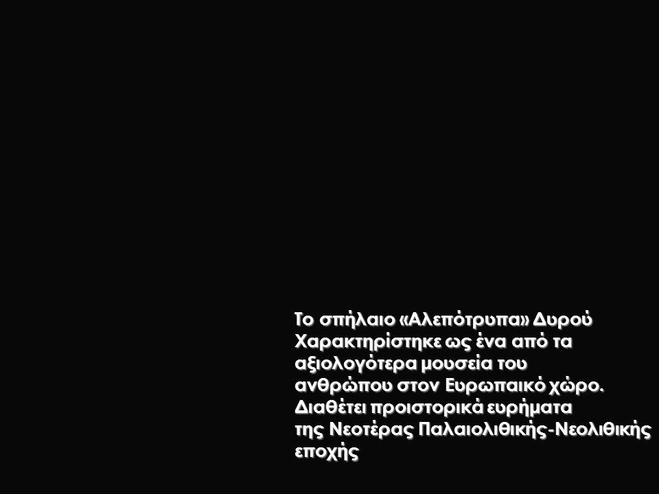 Το σπήλαιο «Αλεπότρυπα» Δυρού Χαρακτηρίστηκε ως ένα από τα αξιολογότερα μουσεία του ανθρώπου στον Ευρωπαικό χώρο. Διαθέτει προιστορικά ευρήματα της Νε