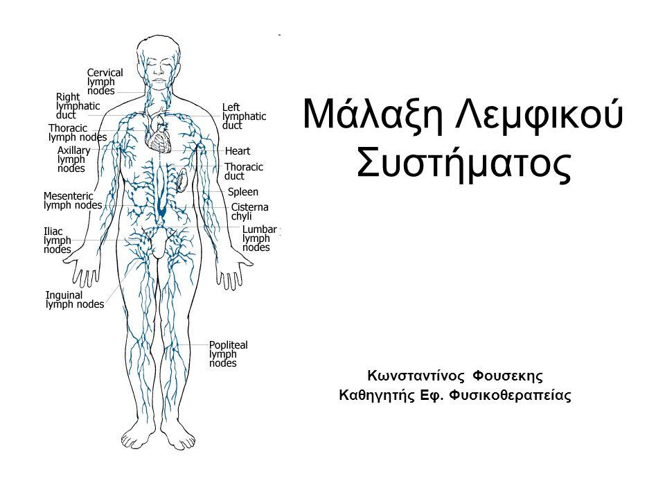 Μάλαξη Λεμφικού Συστήματος Κωνσταντίνος Φουσεκης Καθηγητής Εφ. Φυσικοθεραπείας