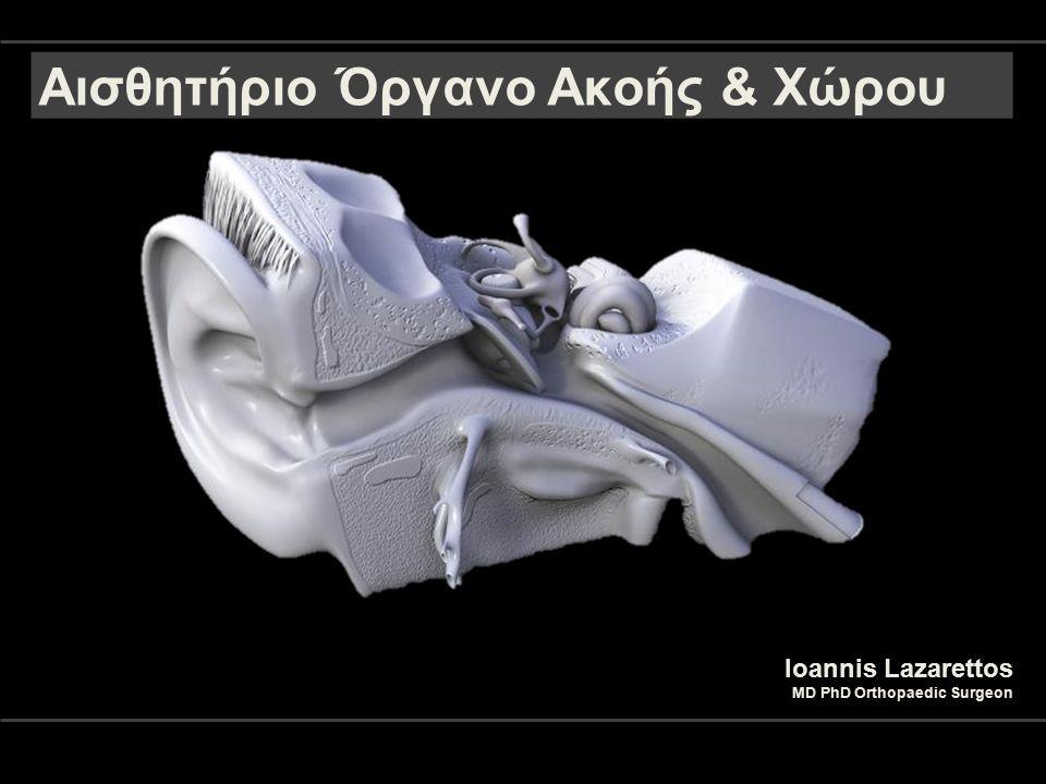 Αισθητήριο Όργανο Ακοής & Χώρου Ioannis Lazarettos MD PhD Orthopaedic Surgeon