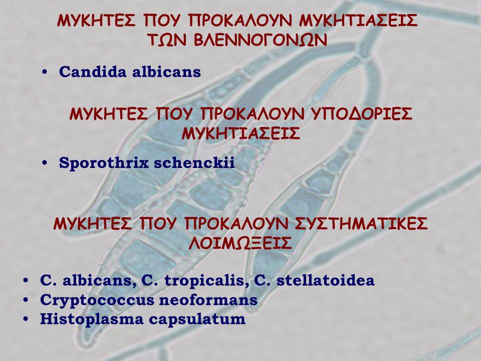 ΜΥΚΗΤΕΣ ΠΟΥ ΠΡΟΚΑΛΟΥΝ ΜΥΚΗΤΙΑΣΕΙΣ ΤΩΝ ΒΛΕΝΝΟΓΟΝΩΝ Candida albicans ΜΥΚΗΤΕΣ ΠΟΥ ΠΡΟΚΑΛΟΥΝ ΣΥΣΤΗΜΑΤΙΚΕΣ ΛΟΙΜΩΞΕΙΣ C. albicans, C. tropicalis, C. stellat