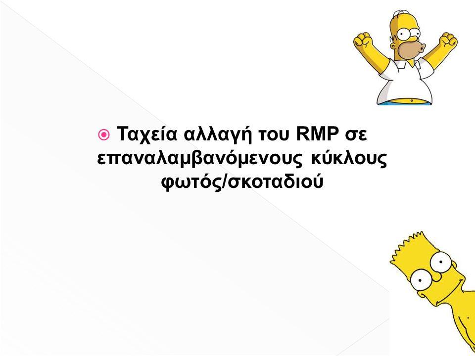  Ταχεία αλλαγή του RMP σε επαναλαμβανόμενους κύκλους φωτός/σκοταδιού