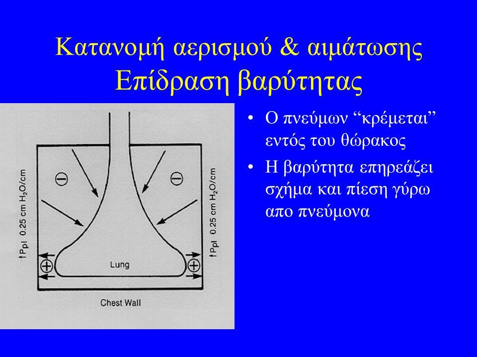 """Κατανομή αερισμού & αιμάτωσης Επίδραση βαρύτητας Ο πνεύμων """"κρέμεται"""" εντός του θώρακος Η βαρύτητα επηρεάζει σχήμα και πίεση γύρω απο πνεύμονα"""