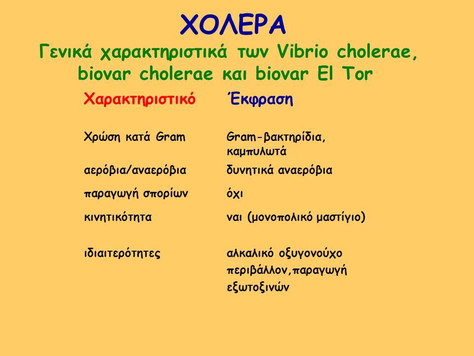 ΧΟΛΕΡΑ Γενικά χαρακτηριστικά των Vibrio cholerae, biovar cholerae και biovar El Tor ΧαρακτηριστικόΈκφραση Χρώση κατά GramGram-βακτηρίδια, καμπυλωτά αε