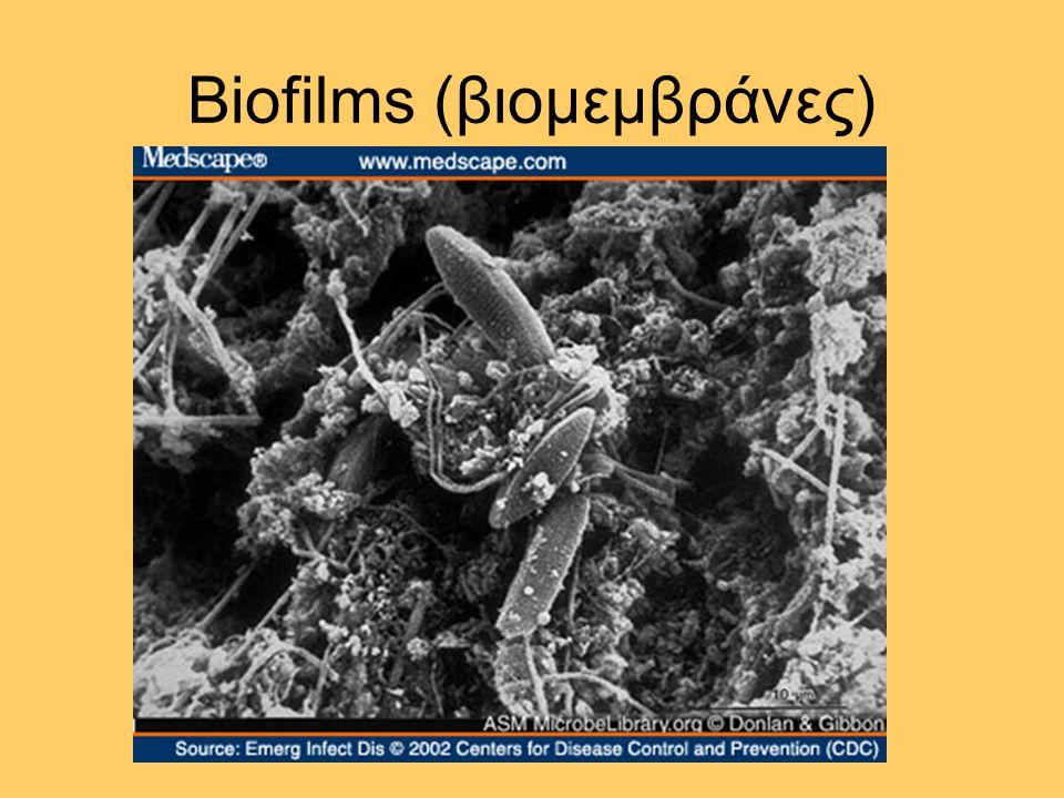 ΧΟΛΕΡΑ Εργαστηριακή Διάγνωση (2) καλλιέργεια : ειδικά θρεπτικά υλικά, ειδικές συνθήκες θερμοκρασίας και pH ταυτοποίηση : βιοχημική, ορολογική (Ο:1, Ο:139), λυσιτυπία (El Tor)