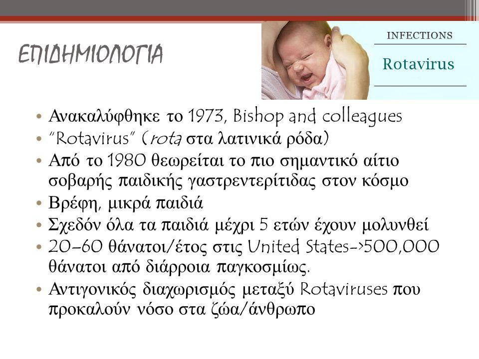 ΕΠΙΔΗΜΙΟΛΟΓΙΑ Ανακαλύφθηκε το 1973, Bishop and colleagues Rotavirus (rota στα λατινικά ρόδα ) Α π ό το 1980 θεωρείται το π ιο σημαντικό αίτιο σοβαρής π αιδικής γαστρεντερίτιδας στον κόσμο Βρέφη, μικρά π αιδιά Σχεδόν όλα τα π αιδιά μέχρι 5 ετών έχουν μολυνθεί 20–60 θάνατοι / έτος στις United States->500,000 θάνατοι α π ό διάρροια π αγκοσμίως.