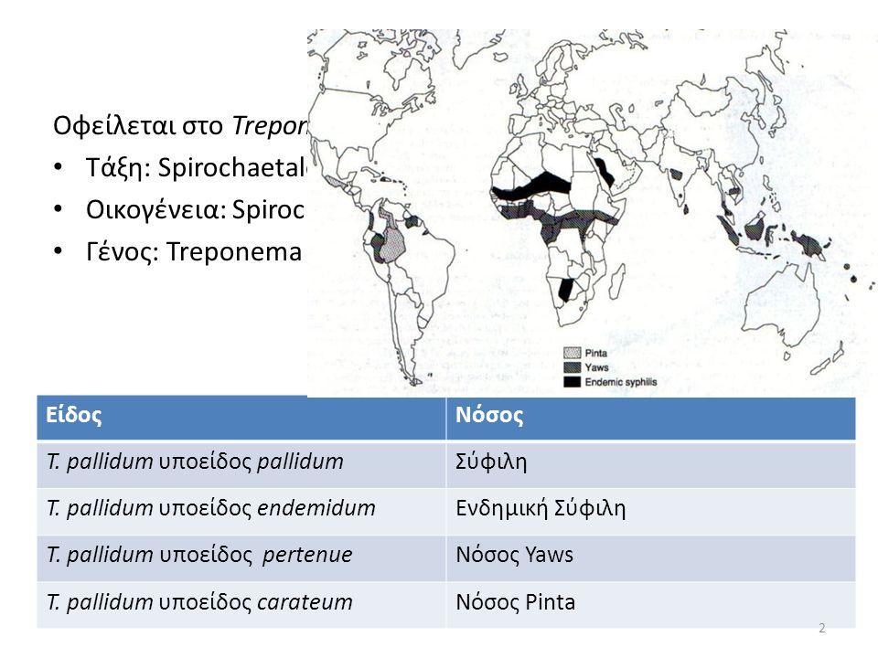 Οφείλεται στο Treponema pallidum subsp. pallidum Τάξη: Spirochaetales Οικογένεια: Spirochaetacae Γένος: Treponema ΕίδοςΝόσος T. pallidum υποείδος pall