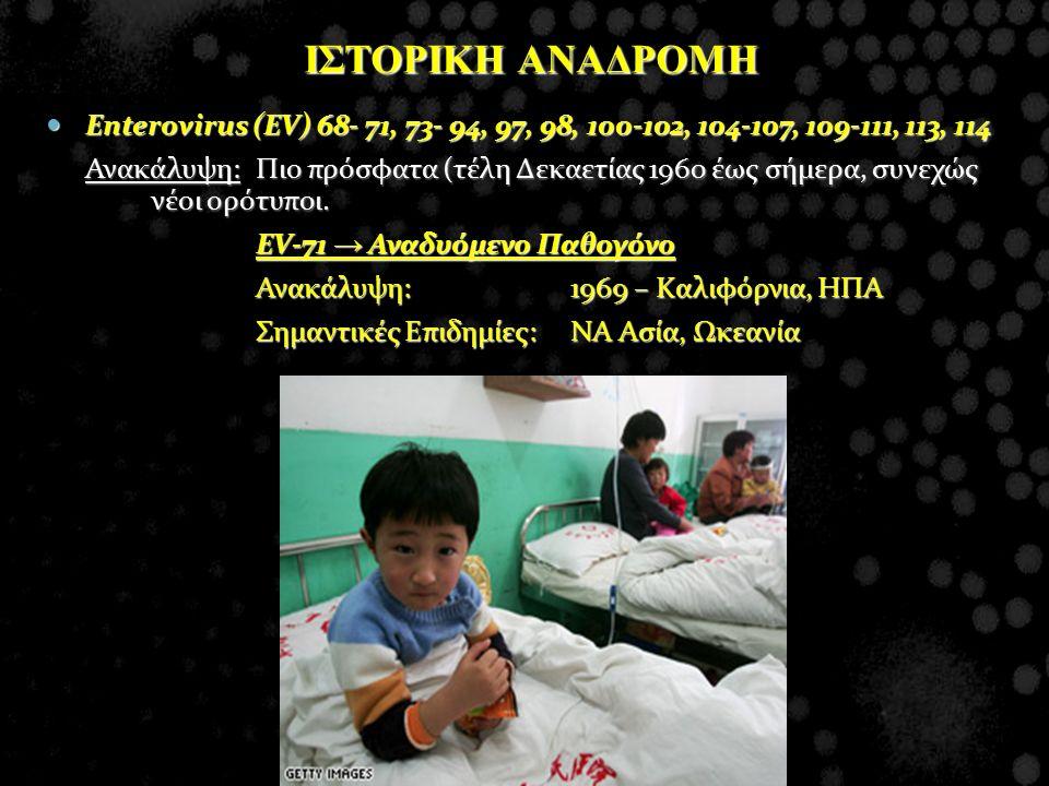 Enterovirus (EV) 68- 71, 73- 94, 97, 98, 100-102, 104-107, 109-111, 113, 114 Enterovirus (EV) 68- 71, 73- 94, 97, 98, 100-102, 104-107, 109-111, 113,