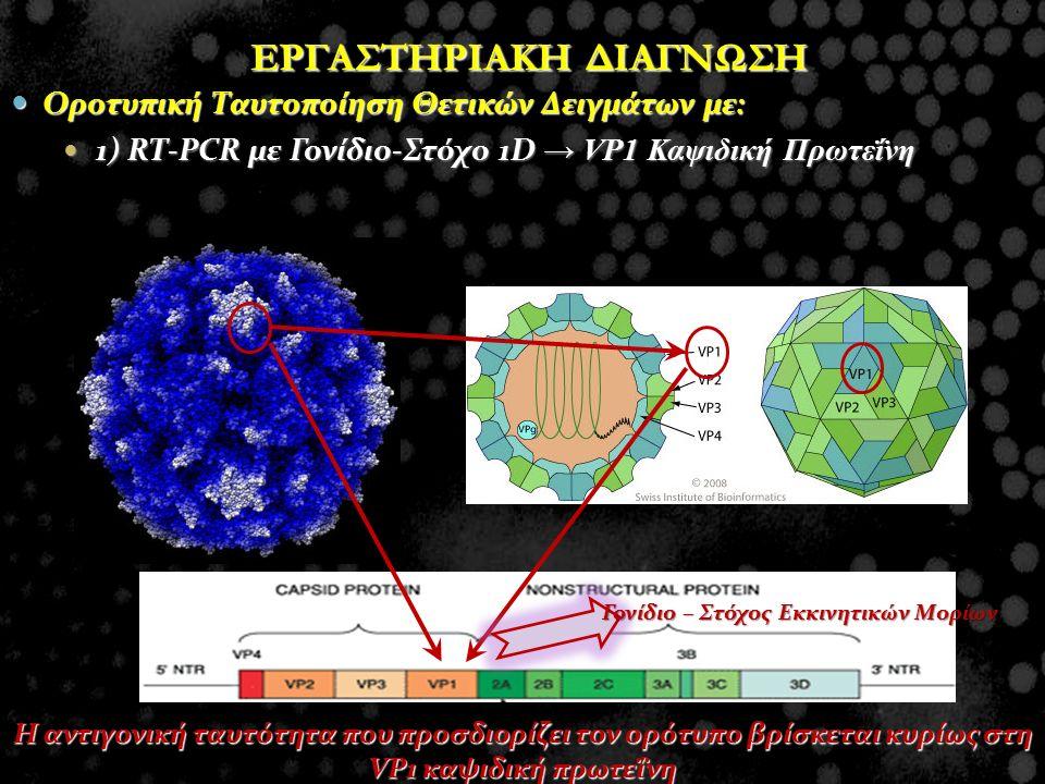 Οροτυπική Ταυτοποίηση Θετικών Δειγμάτων με: Οροτυπική Ταυτοποίηση Θετικών Δειγμάτων με: 1) RT-PCR με Γονίδιο-Στόχο 1D → VP1 Καψιδική Πρωτεΐνη 1) RT-PC