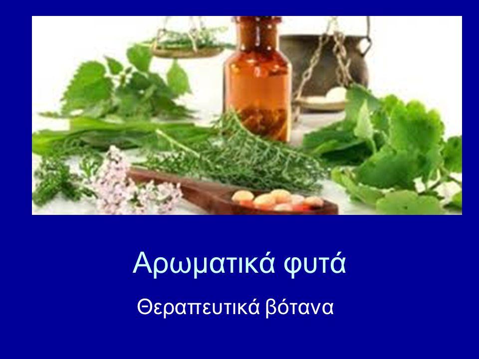 Αρωματικά φυτά Θεραπευτικά βότανα