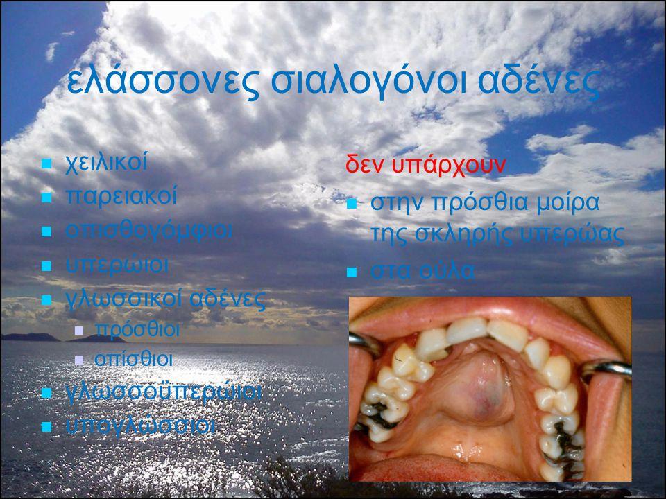 ελάσσονες σιαλογόνοι αδένες χειλικοί παρειακοί οπισθογόμφιοι υπερώιοι γλωσσικοί αδένες πρόσθιοι οπίσθιοι γλωσσοϋπερώιοι υπογλώσσιοι δεν υπάρχουν στην