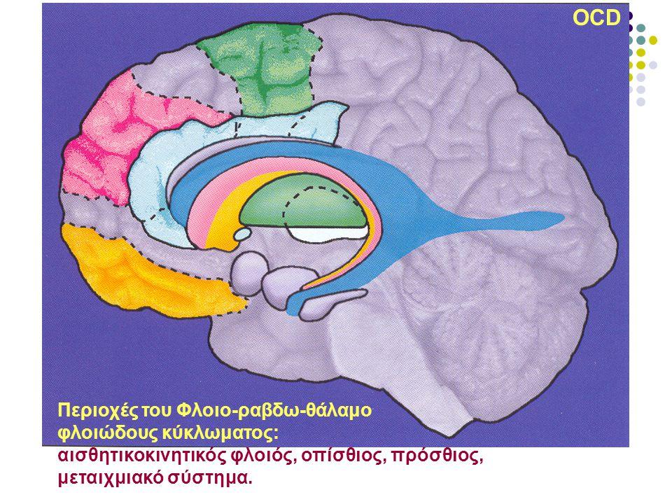OCD Περιοχές του Φλοιο-ραβδω-θάλαμο φλοιώδους κύκλωματος: αισθητικοκινητικός φλοιός, οπίσθιος, πρόσθιος, μεταιχμιακό σύστημα.