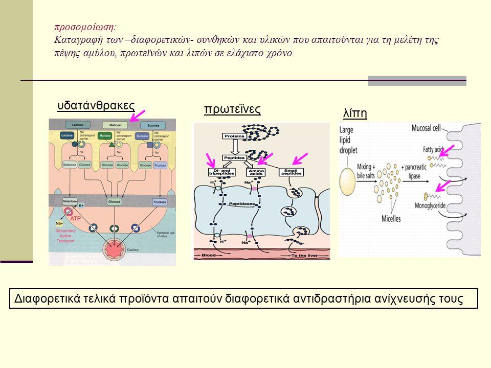προσομοίωση: Καταγραφή των –διαφορετικών- συνθηκών και υλικών που απαιτούνται για τη μελέτη της πέψης αμύλου, πρωτεϊνών και λιπών σε ελάχιστο χρόνο υδ