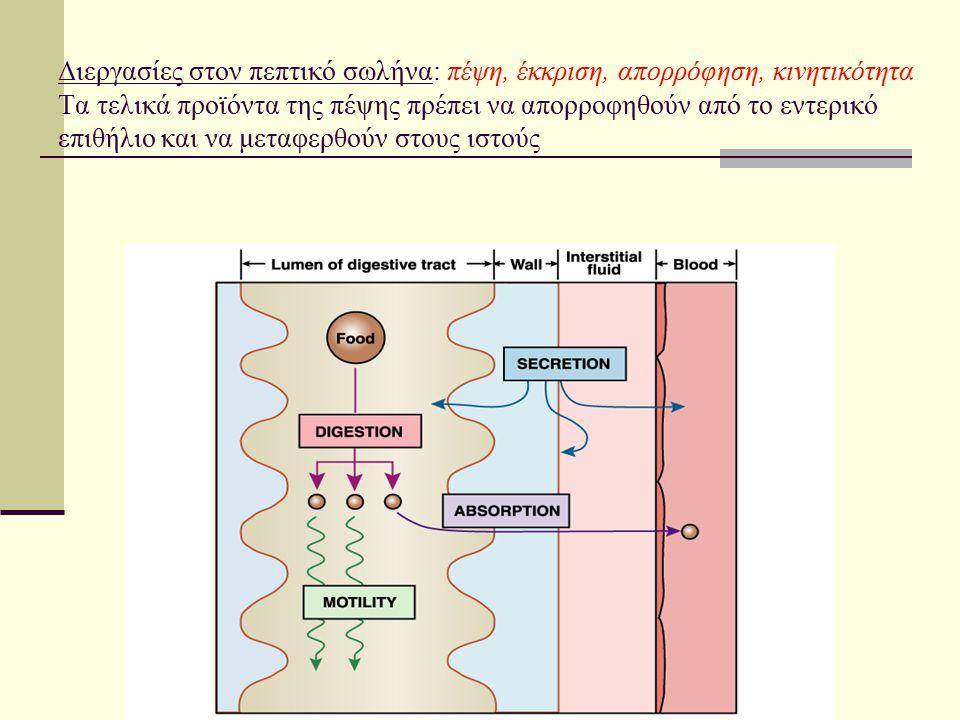 Υπολογισμοί Σχεδιασμός της πρότυπης καμπύλης Αφαίρεση της OD του «θορύβου» (2) από την OD στα κυρίως δείγματα (1) Υπολογισμός των πεπτιδίων στο δείγμα φωτομέτρησης (0.1ml) Αναγωγή στο συνολικό όγκο της αντίδρασης (1.2ml, στον οποίο είχε προστεθεί 0.1ml εκχυλίσματος) Υπολογισμός των πεπτιδίων που προέκυψαν ανά γραμμάριο ιστού (με βάση τη διαδικασία –αραίωση- εκχύλισης) και ανά λεπτό (διαιρώντας με το συνολικό χρόνο αντίδρασης)