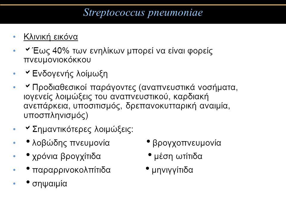 Streptococcus pneumoniae Κλινική εικόνα  Έως 40% των ενηλίκων μπορεί να είναι φορείς πνευμονιοκόκκου  Ενδογενής λοίμωξη  Προδιαθεσικοί παράγοντες (