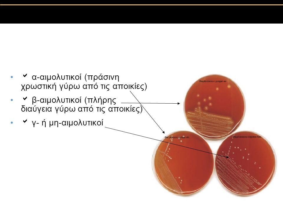  α-αιμολυτικοί (πράσινη χρωστική γύρω από τις αποικίες)  β-αιμολυτικοί (πλήρης διαύγεια γύρω από τις αποικίες)  γ- ή μη-αιμολυτικοί