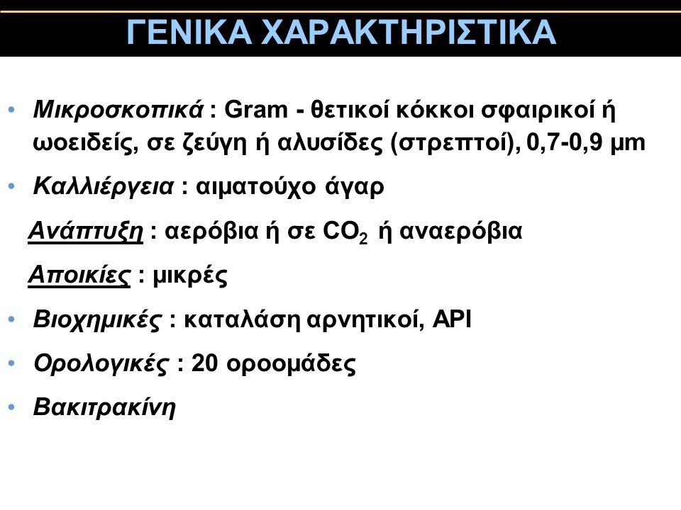ΓΕΝΙΚΑ ΧΑΡΑΚΤΗΡΙΣΤΙΚΑ Μικροσκοπικά : Gram - θετικοί κόκκοι σφαιρικοί ή ωοειδείς, σε ζεύγη ή αλυσίδες (στρεπτοί), 0,7-0,9 μm Kαλλιέργεια : αιματούχο άγ