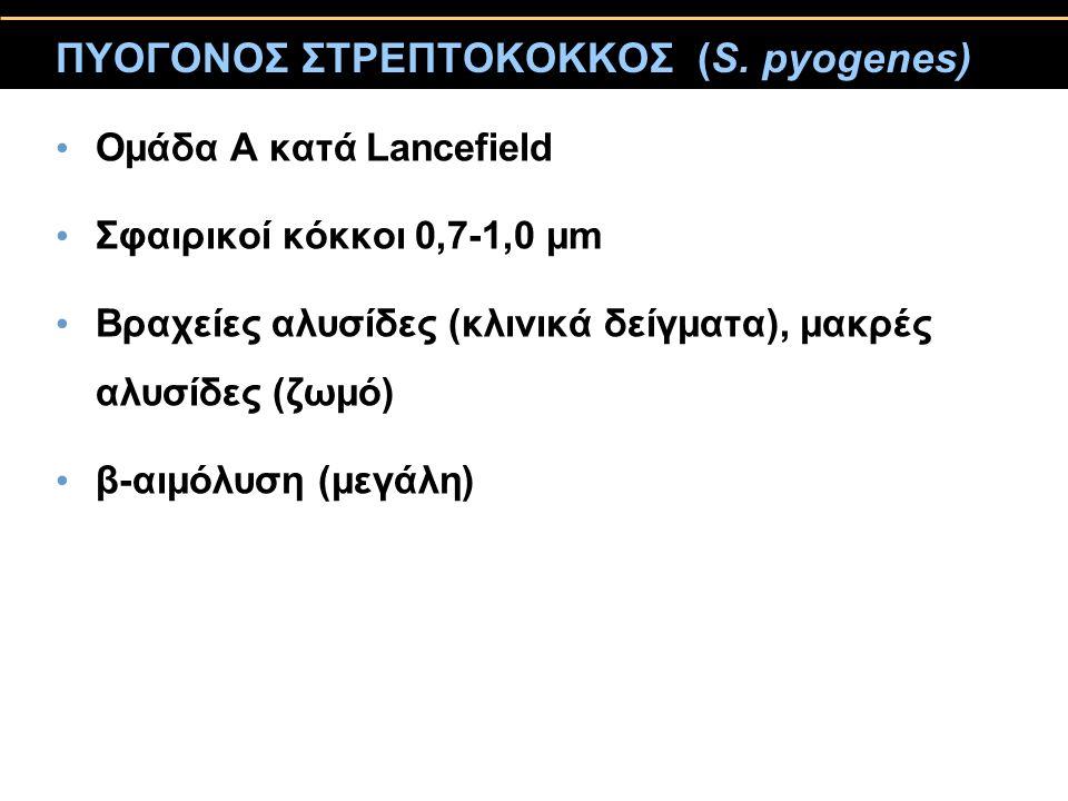 ΠΥΟΓΟΝΟΣ ΣΤΡΕΠΤΟΚΟΚΚΟΣ (S. pyogenes) Ομάδα Α κατά Lancefield Σφαιρικοί κόκκοι 0,7-1,0 μm Βραχείες αλυσίδες (κλινικά δείγματα), μακρές αλυσίδες (ζωμό)
