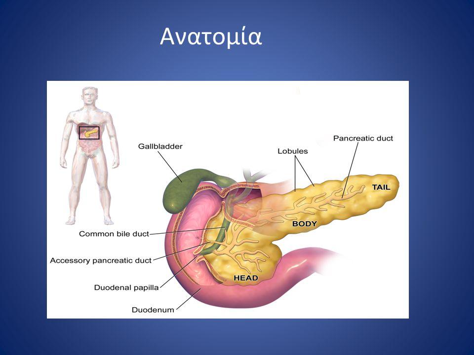 Φυσιολογία Εξωκρινής λειτουργία Σεκρετίνη χολοκυστοκινίνη πνευμονογαστρικό Αμυλάση Λιπάση Ριβονουκλεάσες Φωσφολιπάση Α