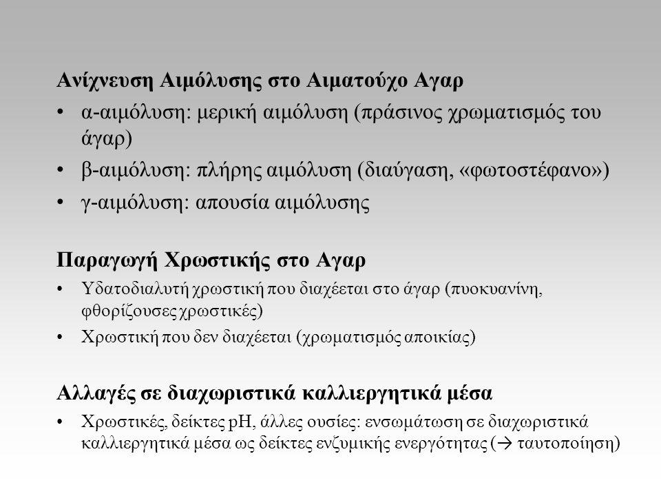 Ανίχνευση Αιμόλυσης στο Αιματούχο Αγαρ α-αιμόλυση: μερική αιμόλυση (πράσινος χρωματισμός του άγαρ) β-αιμόλυση: πλήρης αιμόλυση (διαύγαση, «φωτοστέφανο