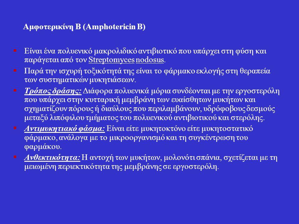 Αμφοτερικίνη Β (Amphotericin Β)  Είναι ένα πολυενικό μακρολιδικό αντιβιοτικό που υπάρχει στη φύση και παράγεται από τον Streptomyces nodosus.  Παρά