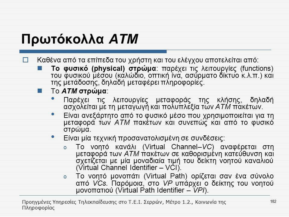 Προηγμένες Υπηρεσίες Τηλεκπαίδευσης στο Τ.Ε.Ι. Σερρών, Μέτρο 1.2., Κοινωνία της Πληροφορίας 182 Πρωτόκολλα ΑΤΜ  Kαθένα από τα επίπεδα του χρήστη και