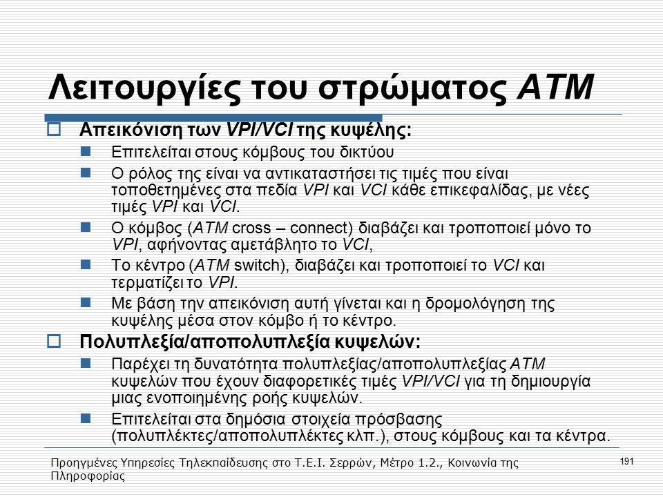 Προηγμένες Υπηρεσίες Τηλεκπαίδευσης στο Τ.Ε.Ι. Σερρών, Μέτρο 1.2., Κοινωνία της Πληροφορίας 191 Λειτουργίες του στρώματος ΑΤΜ  Απεικόνιση των VPI/VCI
