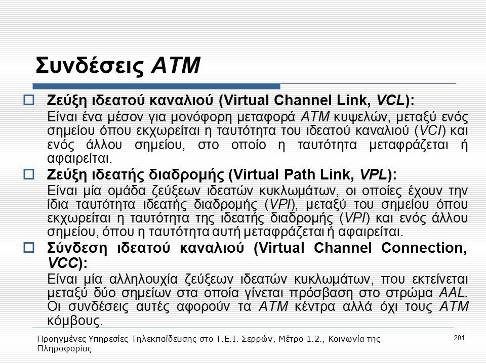 Προηγμένες Υπηρεσίες Τηλεκπαίδευσης στο Τ.Ε.Ι. Σερρών, Μέτρο 1.2., Κοινωνία της Πληροφορίας 201 Συνδέσεις ΑΤΜ  Ζεύξη ιδεατού καναλιού (Virtual Channe