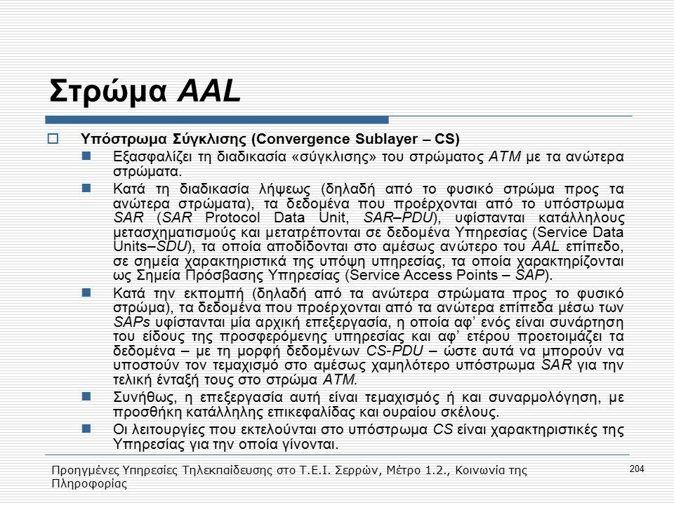 Προηγμένες Υπηρεσίες Τηλεκπαίδευσης στο Τ.Ε.Ι. Σερρών, Μέτρο 1.2., Κοινωνία της Πληροφορίας 204 Στρώμα ΑΑL  Υπόστρωμα Σύγκλισης (Convergence Sublayer