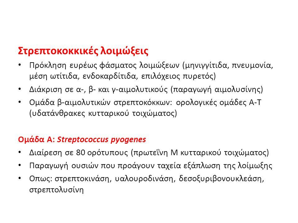 Πρόκληση ευρέως φάσματος λοιμώξεων (μηνιγγίτιδα, πνευμονία, μέση ωτίτιδα, ενδοκαρδίτιδα, επιλόχειος πυρετός) Διάκριση σε α-, β- και γ-αιμολυτικούς (πα
