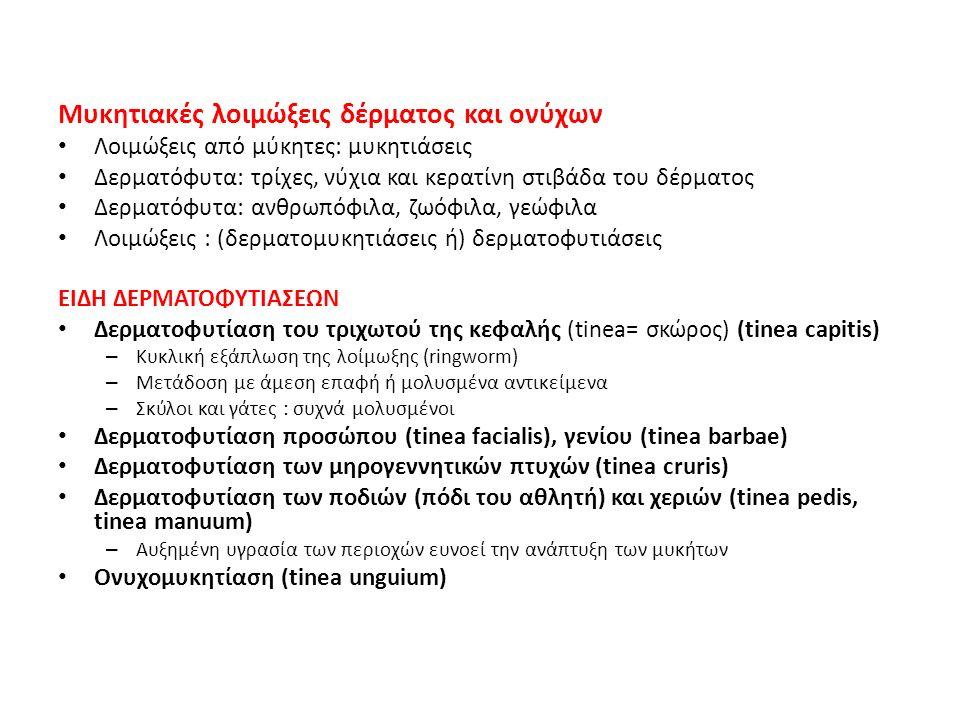 Λοιμώξεις από μύκητες: μυκητιάσεις Δερματόφυτα: τρίχες, νύχια και κερατίνη στιβάδα του δέρματος Δερματόφυτα: ανθρωπόφιλα, ζωόφιλα, γεώφιλα Λοιμώξεις :