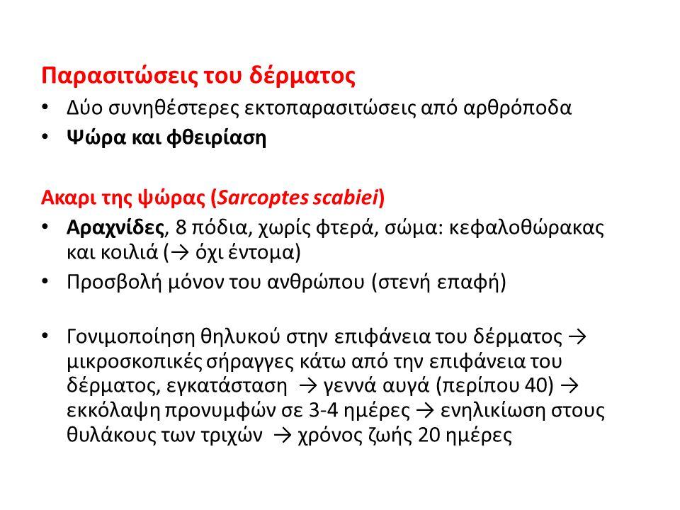 Παρασιτώσεις του δέρματος Δύο συνηθέστερες εκτοπαρασιτώσεις από αρθρόποδα Ψώρα και φθειρίαση Ακαρι της ψώρας (Sarcoptes scabiei) Αραχνίδες, 8 πόδια, χ
