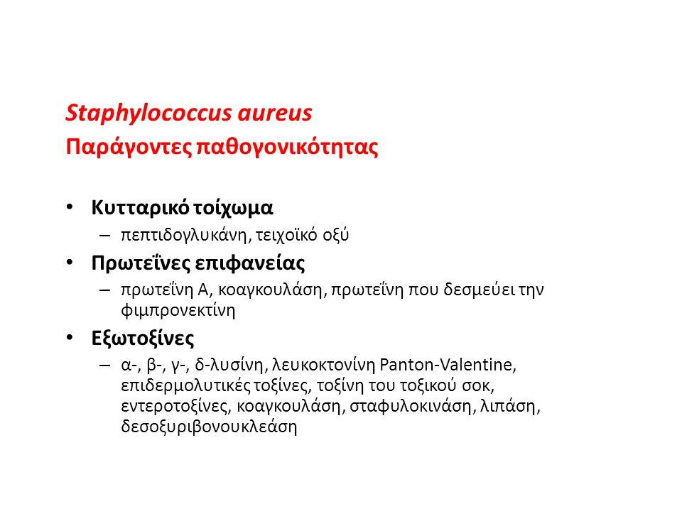 Πρόκληση ευρέως φάσματος λοιμώξεων (μηνιγγίτιδα, πνευμονία, μέση ωτίτιδα, ενδοκαρδίτιδα, επιλόχειος πυρετός) Διάκριση σε α-, β- και γ-αιμολυτικούς (παραγωγή αιμολυσίνης) Ομάδα β-αιμολυτικών στρεπτοκόκκων: ορολογικές ομάδες Α-Τ (υδατάνθρακες κυτταρικού τοιχώματος) Ομάδα Α: Streptococcus pyogenes Διαίρεση σε 80 ορότυπους (πρωτεΐνη Μ κυτταρικού τοιχώματος) Παραγωγή ουσιών που προάγουν ταχεία εξάπλωση της λοίμωξης Οπως: στρεπτοκινάση, υαλουροδινάση, δεσοξυριβονουκλεάση, στρεπτολυσίνη