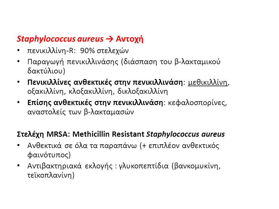 Staphylococcus aureus → Αντοχή πενικιλλίνη-R: 90% στελεχών Παραγωγή πενικιλλινάσης (διάσπαση του β-λακταμικού δακτύλιου) Πενικιλλίνες ανθεκτικές στην