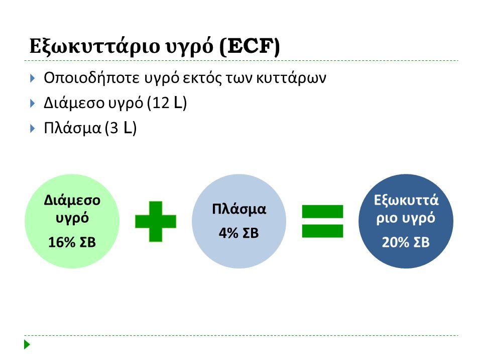 Εξωκυττάριο υγρό (ECF)  Οποιοδήποτε υγρό εκτός των κυττάρων  Διάμεσο υγρό (12 L)  Πλάσμα (3 L)