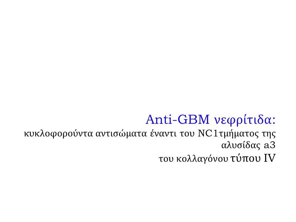 Anti-GBM νεφρίτιδα : κυκλοφορούντα αντισώματα έναντι του NC1 τμήματος της αλυσίδας a3 του κολλαγόνου τύπου IV