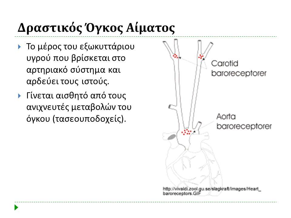 Δραστικός Όγκος Αίματος  Το μέρος του εξωκυττάριου υγρού που βρίσκεται στο αρτηριακό σύστημα και αρδεύει τους ιστούς.  Γίνεται αισθητό από τους ανιχ