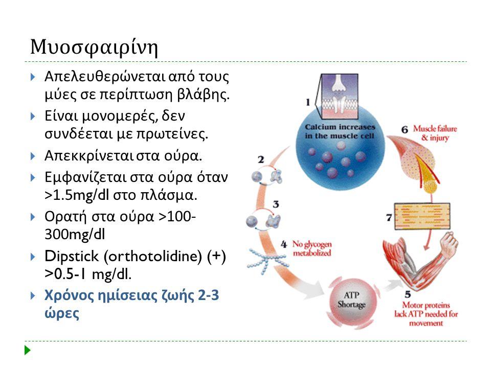 Μυοσφαιρίνη  Απελευθερώνεται από τους μύες σε περίπτωση βλάβης.  Είναι μονομερές, δεν συνδέεται με πρωτείνες.  Απεκκρίνεται στα ούρα.  Εμφανίζεται