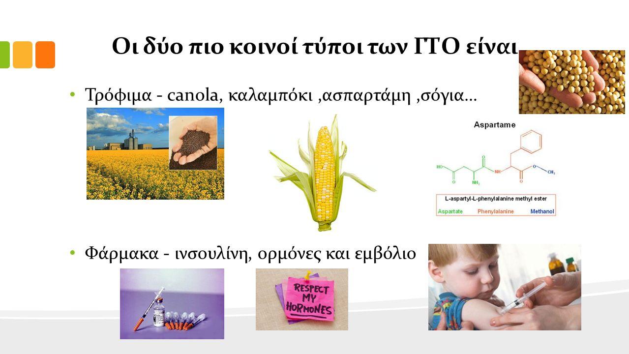 Οι δύο πιο κοινοί τύποι των ΓΤΟ είναι Τρόφιμα - canola, καλαμπόκι,ασπαρτάμη,σόγια… Φάρμακα - ινσουλίνη, ορμόνες και εμβόλιο