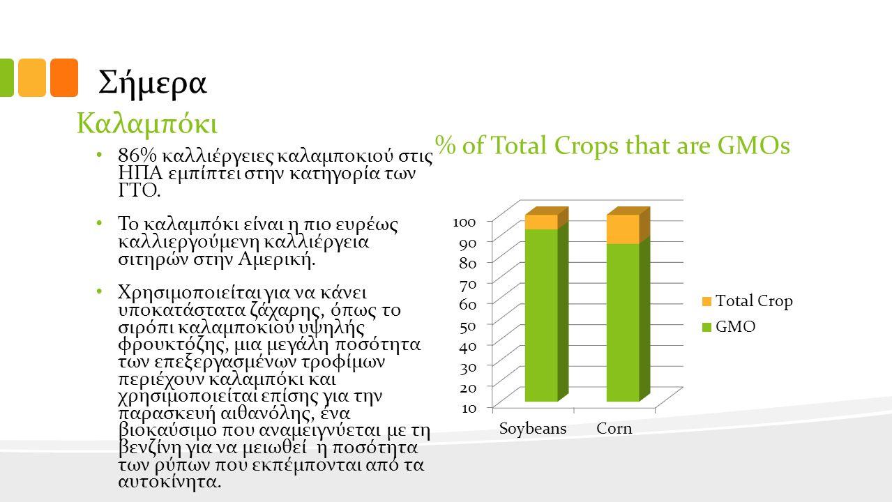 Σήμερα Καλαμπόκι 86% καλλιέργειες καλαμποκιού στις ΗΠΑ εμπίπτει στην κατηγορία των ΓΤΟ.