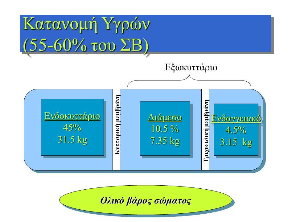 Ενδοκυττάριο45% 31.5 kg Ενδοκυττάριο45% Διάμεσο 10.5 % 7.35 kg Διάμεσο 10.5 % 7.35 kg Ενδαγγειακό4.5% 3.15 kg Ενδαγγειακό4.5% Ολικό βάρος σώματος Κατα