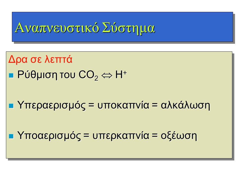 Αναπνευστικό Σύστημα Δρα σε λεπτά n Ρύθμιση του CO 2  H + n Υπεραερισμός = υποκαπνία = αλκάλωση n Υποαερισμός = υπερκαπνία = οξέωση Δρα σε λεπτά n Ρύ