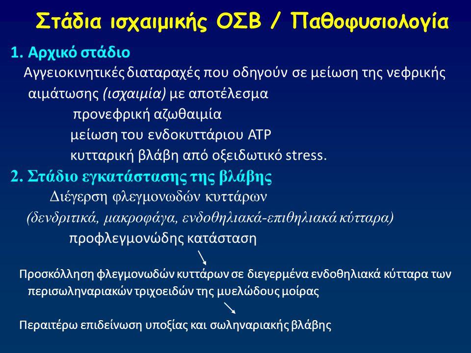 Στάδια ισχαιμικής ΟΣΒ / Παθοφυσιολογία 1.Αρχικό στάδιο Αγγειοκινητικές διαταραχές που οδηγούν σε μείωση της νεφρικής αιμάτωσης (ισχαιμία) με αποτέλεσμ