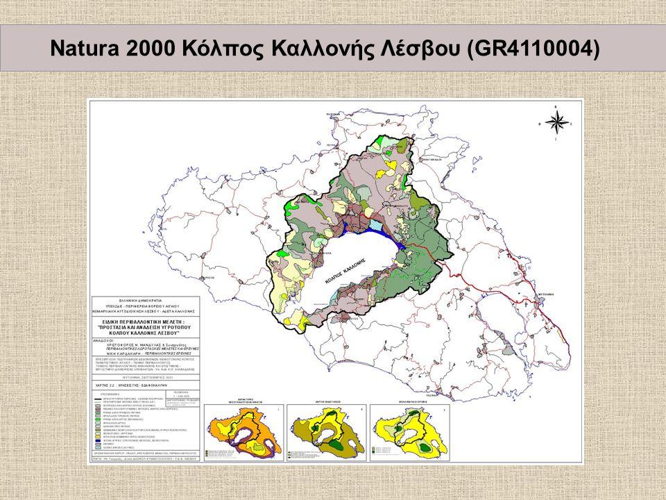 Natura 2000 Κόλπος Καλλονής Λέσβου (GR4110004)